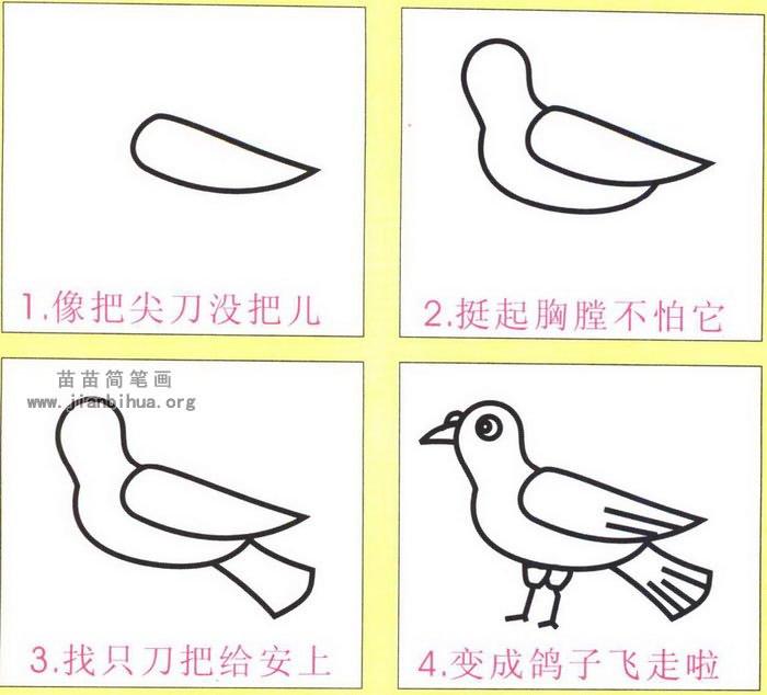 鸽子简笔画画法图解