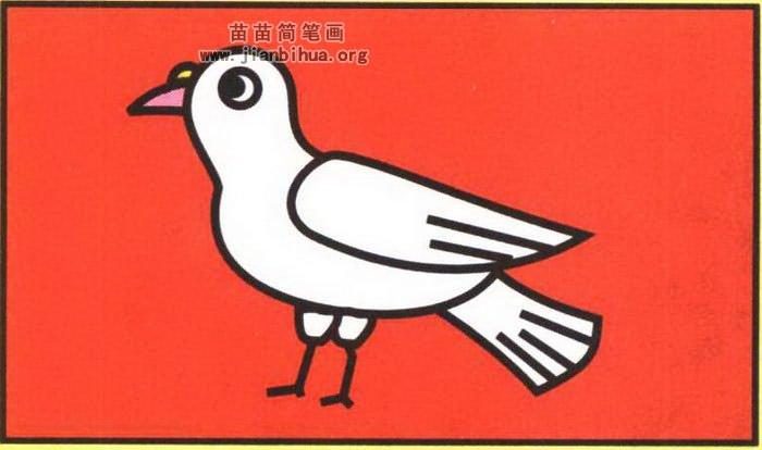 鸽子简笔画图片-鸽子简笔画画法图解