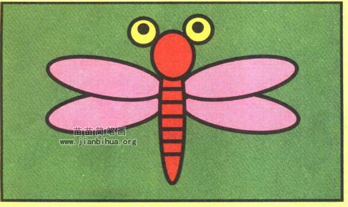 小蜻蜓简笔画2 动物简笔画