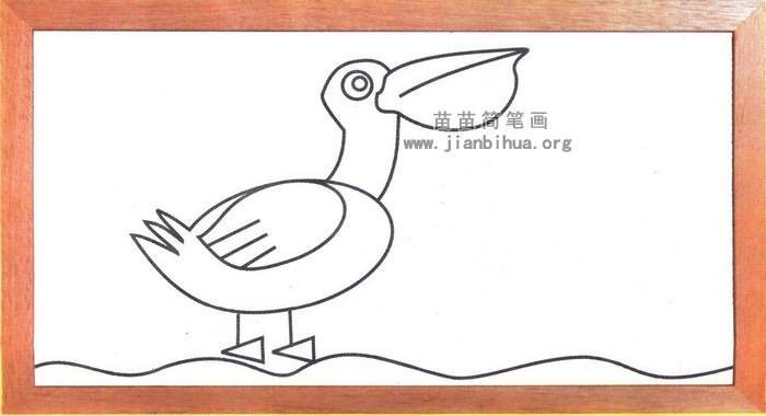 鹈鹕简笔画怎么画图解