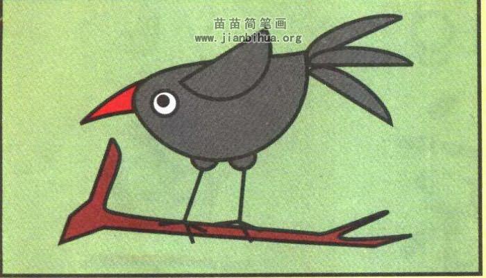 乌鸦卡通简笔画图片(彩色版)-乌鸦卡通简笔画图解