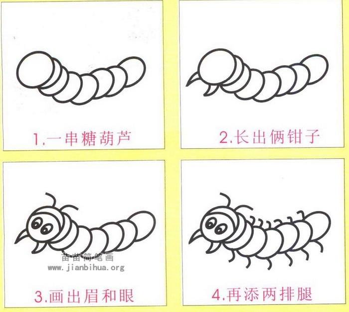 蜈蚣简笔画画法图解