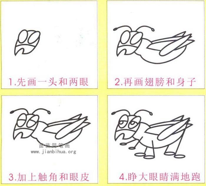 动物简笔画 昆虫简笔画