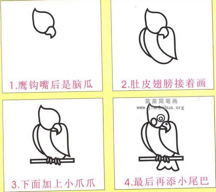鹦鹉卡通简笔画图片教程
