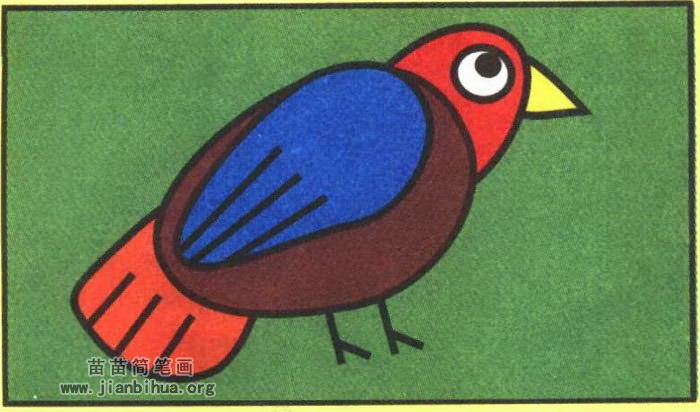 知更鸟简笔画图片(彩色版)