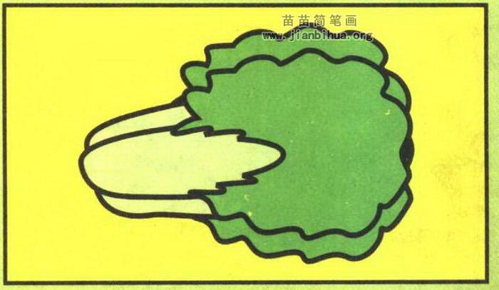 白菜简笔画怎么画图解