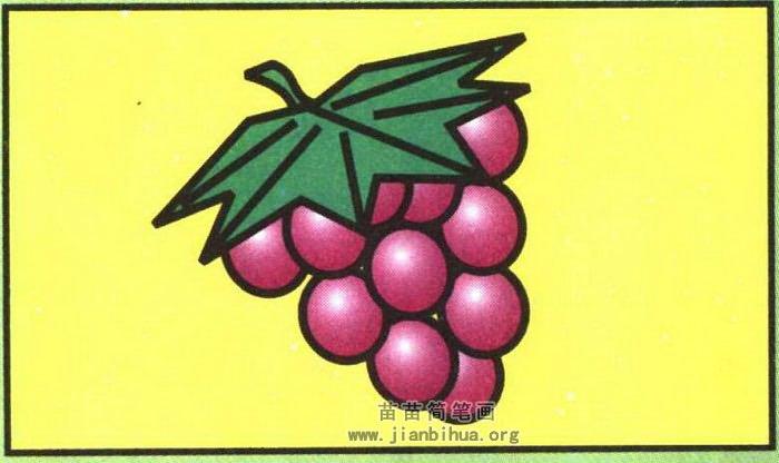 葡萄简笔画
