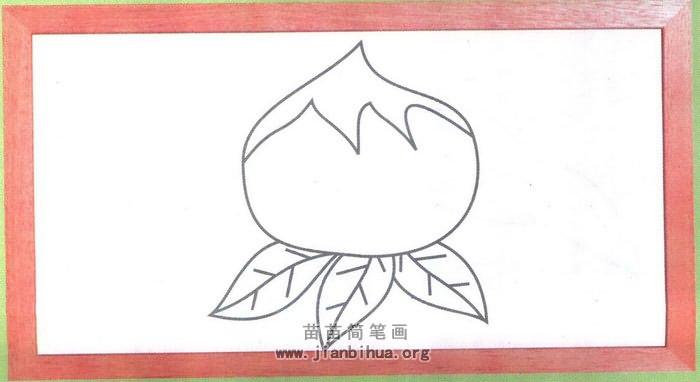 桃子简笔画怎么画图解