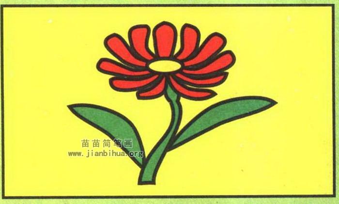 雏菊简笔画图片(彩色版)
