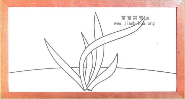 植物花卉简笔画大全