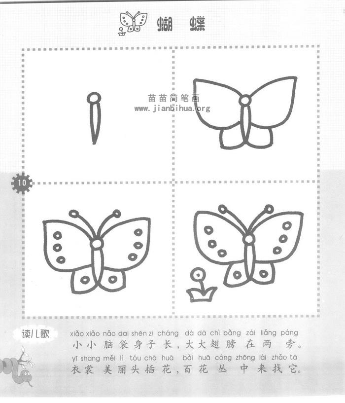 蝴蝶儿歌和简笔画教程