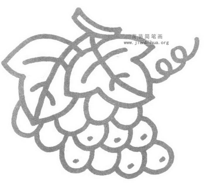 葡萄儿歌和简笔画教程图片