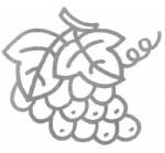 葡萄儿歌和简笔画教程