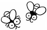 苍蝇简笔画如何画教程