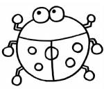 瓢虫简笔画图片与知识