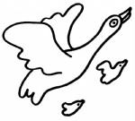 大雁简笔画图片与知识