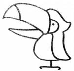 大嘴鸟简笔画图片与知识