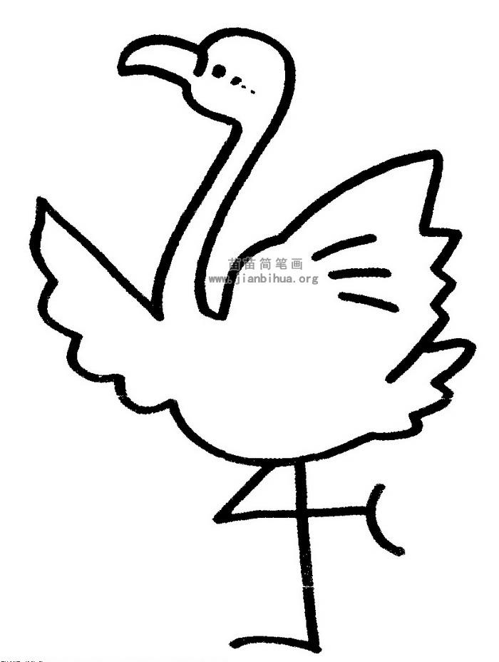 火烈鸟简笔画