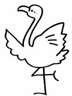 火烈鸟简笔画图片与知识