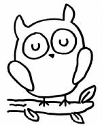 猫头鹰简笔画图片与知识