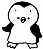 企鹅简笔画图片与知识