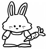 兔子简笔画图片与知识