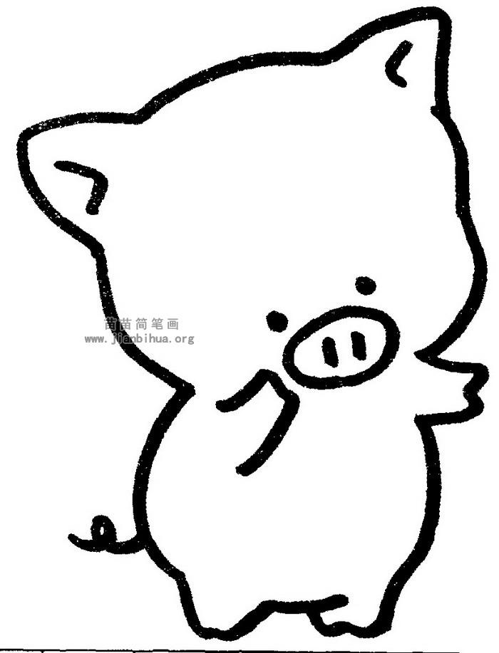 小猪简笔画图片与知识图片