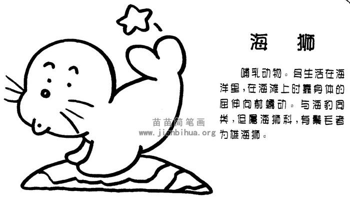 海狮简笔画图片与知识