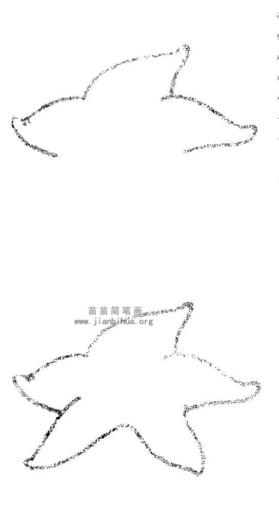 海星简笔画图解图片