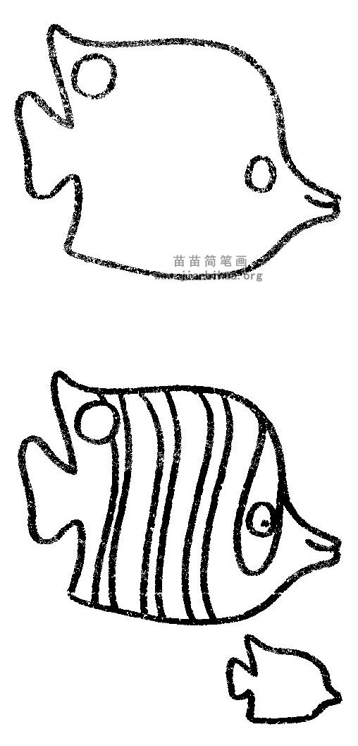 蝴蝶鱼简笔画图片与知识