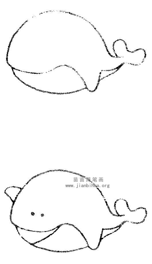 鲸鱼简笔画图片与知识