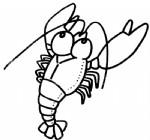 龙虾简笔画图片与知识