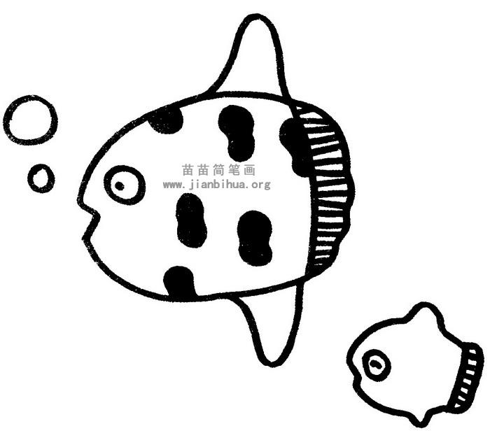 热带鱼简笔画