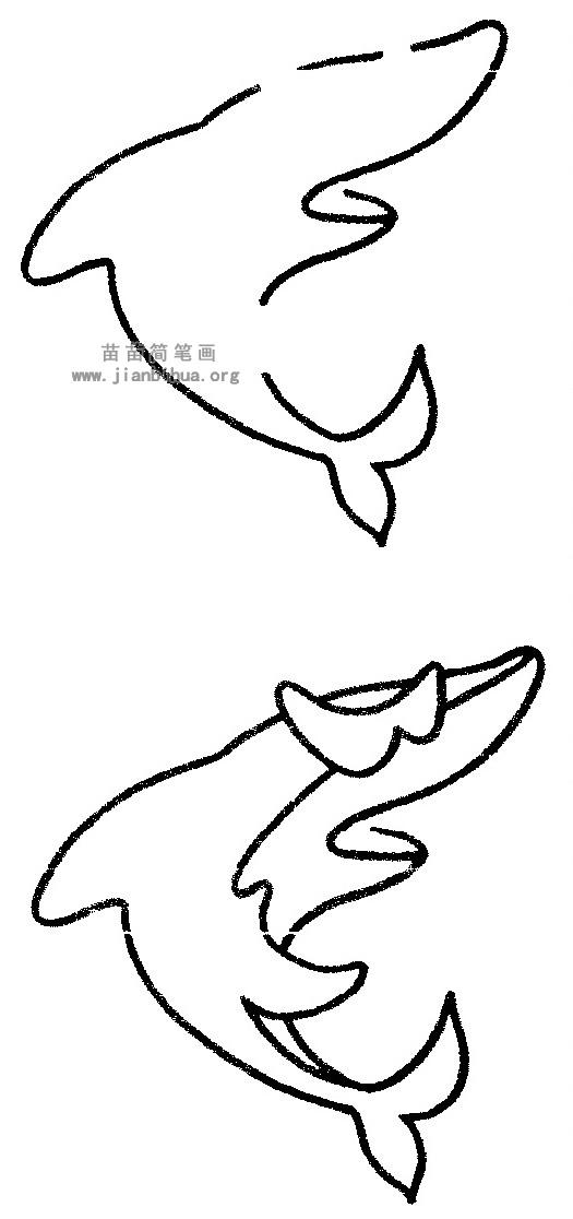 鲨鱼简笔画