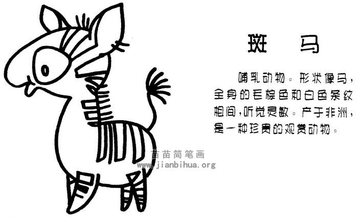 斑马简笔画