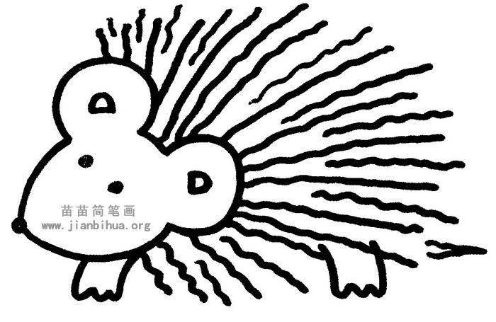 刺猬简笔画图片与知识