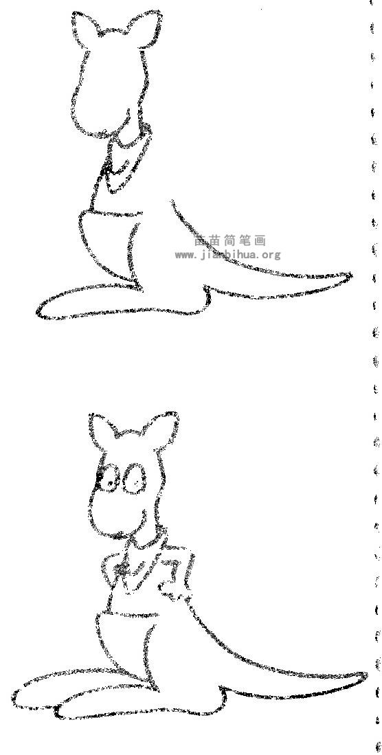 袋鼠简笔画图片与知识