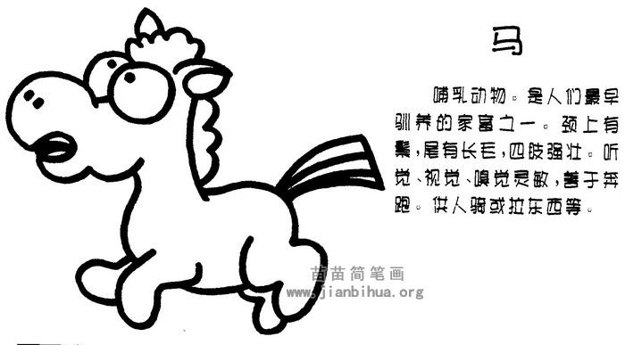 小马简笔画
