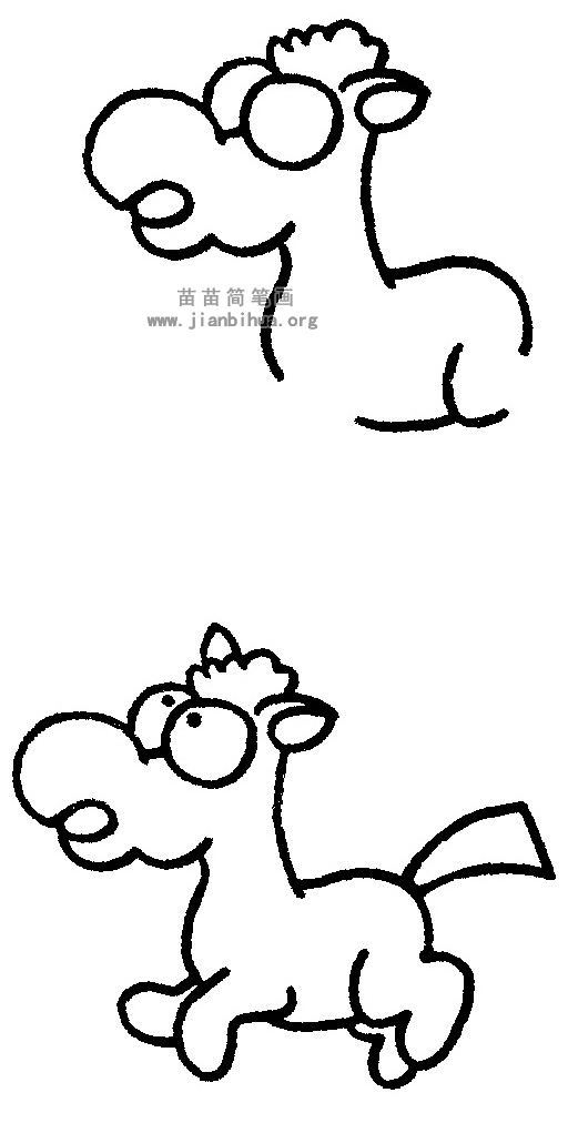 小马简笔画图片与知识