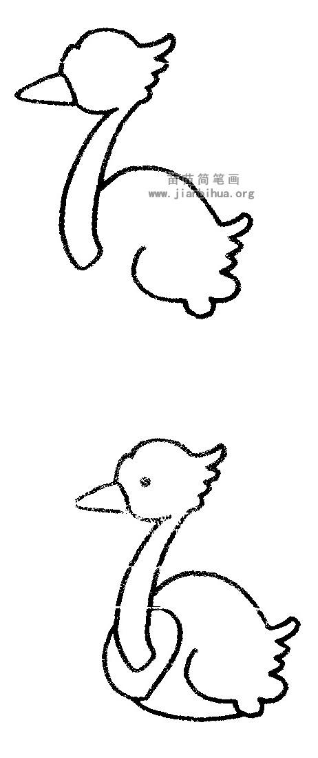 鸵鸟简笔画