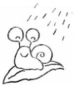 蜗牛简笔画图片与知识