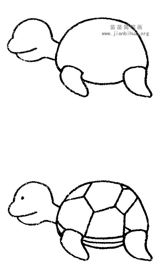 背部隆起,黑褐色,有花纹,趾有蹼,能游泳.