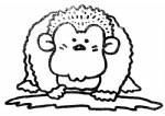 猩猩简笔画图片与知识