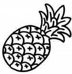 菠萝简笔画图片与知识