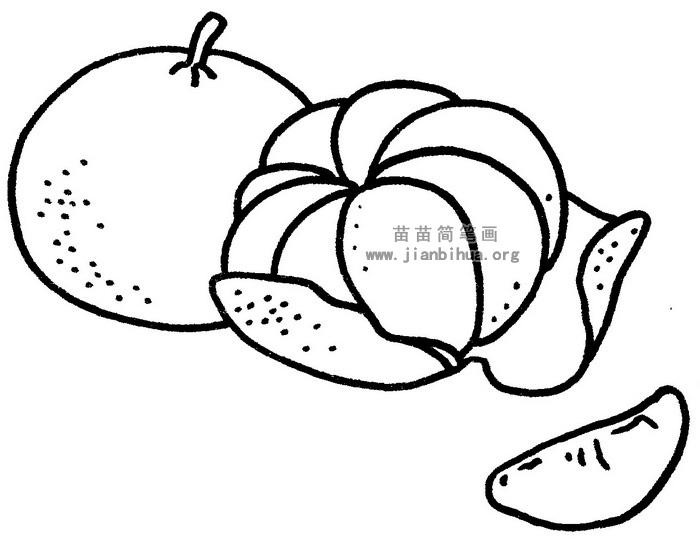 橘子简笔画图片与知识