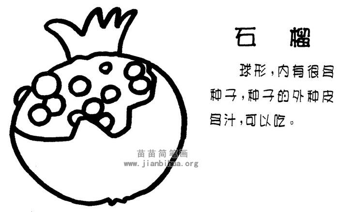 石榴简笔画