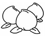 桃子简笔画图片与知识