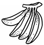 香蕉简笔画图片与知识