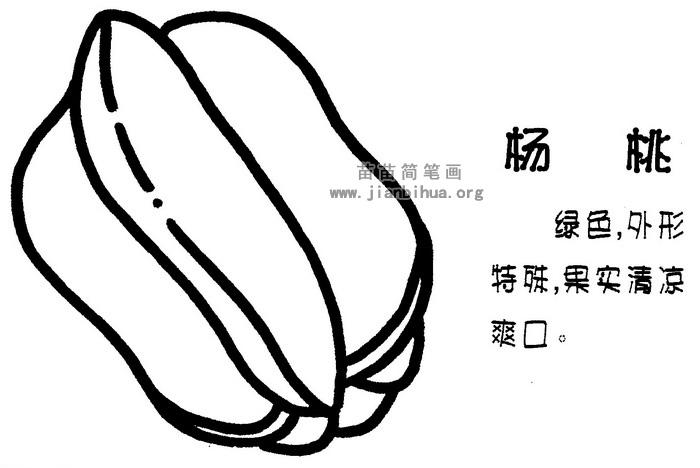 杨桃简笔画