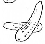 黄瓜简笔画图片与知识